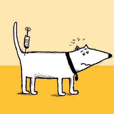 Cepljenje psov
