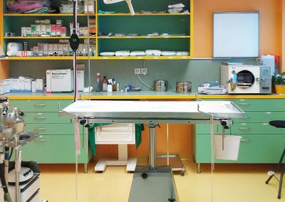 Kirurgija na veterinarski kliniki PET VET