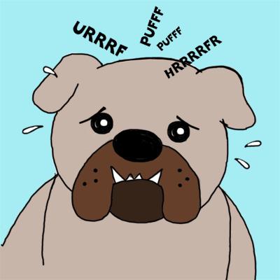 Psi kratkogobčnih pasem